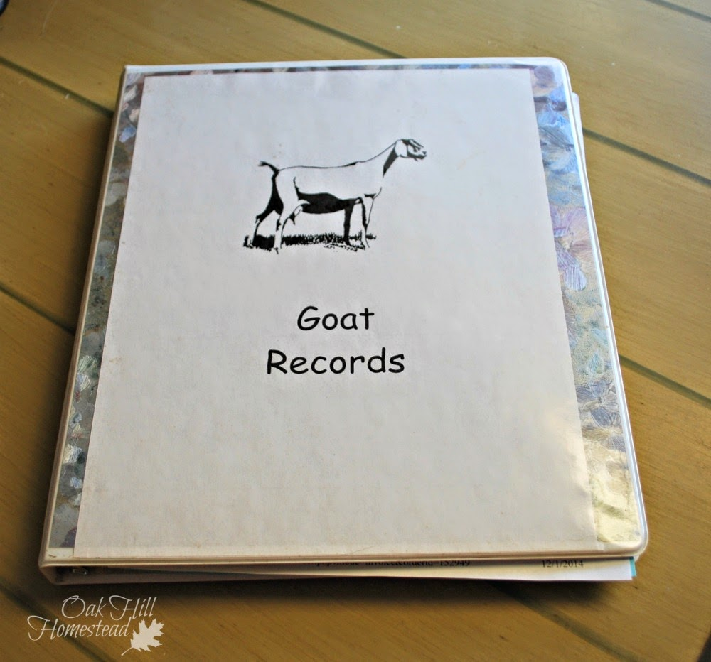 Goat records notebook