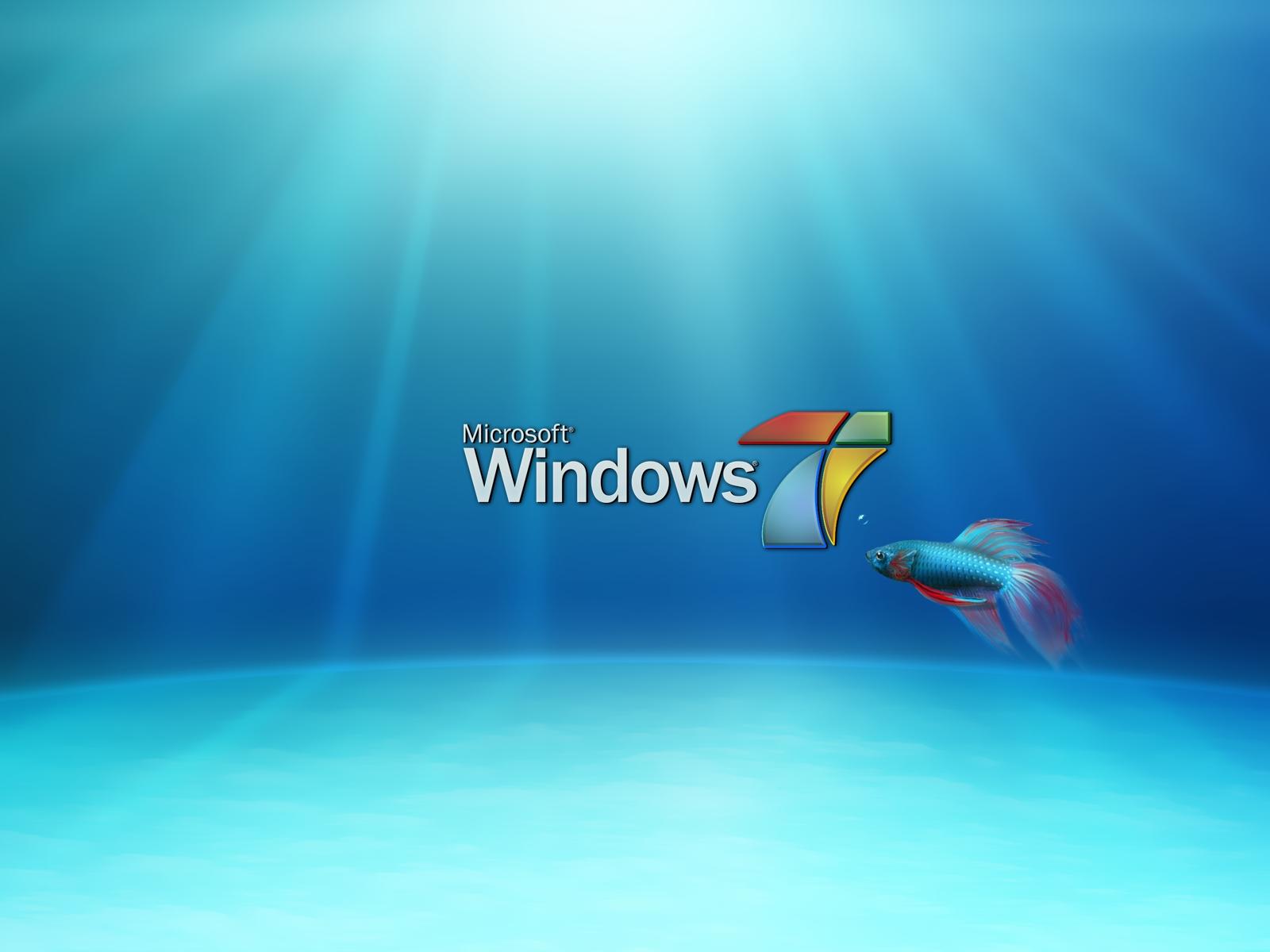 window 7 HD Wallpaper: HD Wallpapers of Windows 7 2