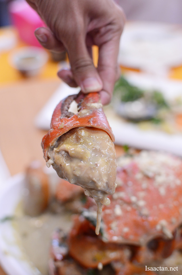 Lovely crab claw filled with generous amount of crab meat, doused in Matcha Cheese Sauce