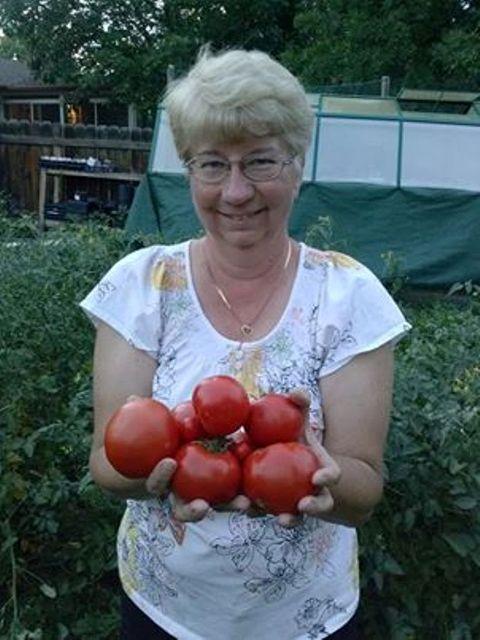 the flower bin: tips for first time vegetable gardeners, Gartenarbeit ideen