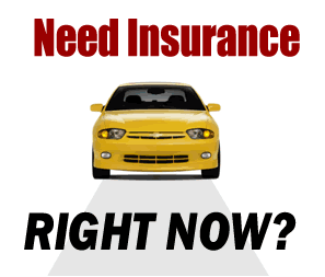 Cheap Car Insurance Quotes Near Me
