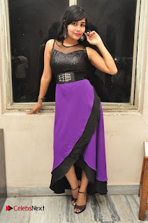 Telugu Actress Rachana Smith Stills at Money is Honey Audio Release  0046.jpg