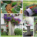 10 Ways to Spice up Your Yard with a Tree Stump