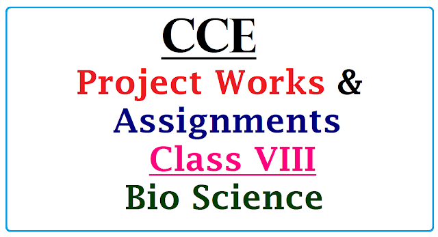 CCE Project Works & Assignments for VIII Class Biological Science Download Here | Suggestive Project Works for 8th Class Biological Science Download Now here | Assigments for VIII Class Biological Science as per CCE | | Continuous Comprehensive Evaluation CCE Proposed Project Works for VIII standard Biological Science Download | Download Model Projects and Assignemnts for Science of VIII Class Biological Science cce-project-works-assignments-for-viii-download/2017/01/cce-project-works-assignments-for-viii-class-biologycal-science-download-here.html