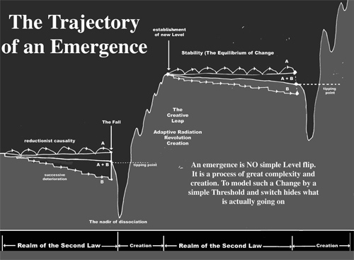 TRAJECTORY OF AN EMERGENCE