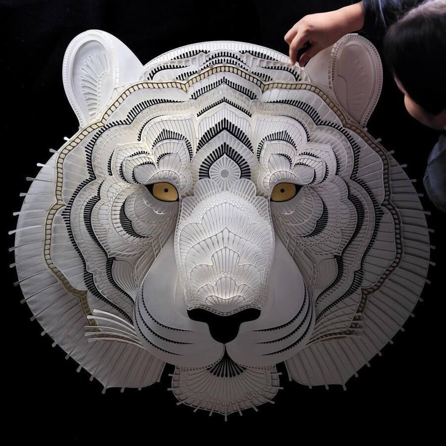 03-Tiger-Patrick-Cabral-www-designstack-co