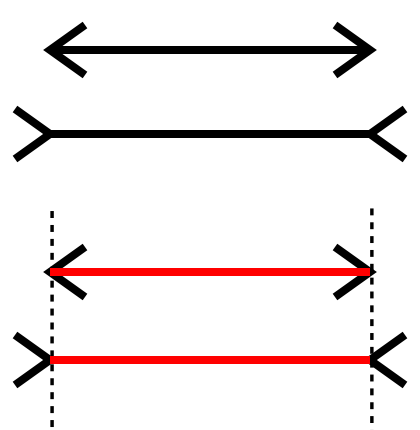 literature review on muller lyer illusion