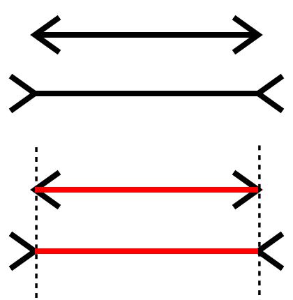 [Image: Muller_Lyer_illusion.png]