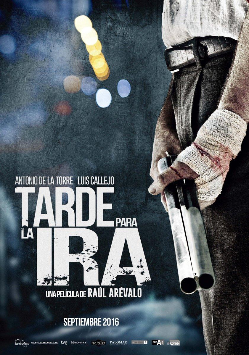 TARDE PARA LA IRA - cartel película