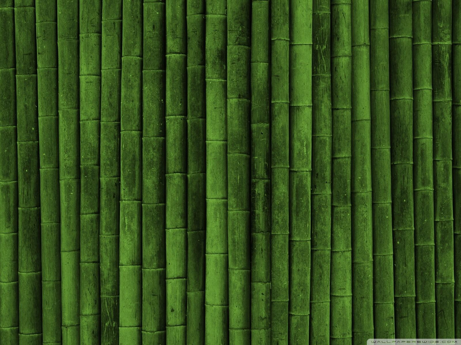 bamboowallwallpaperhdwall