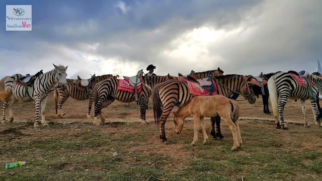 Visiting Lang Biang Highland, Dalat 2015