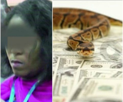 For the first time after she was accused of turning to a snake through which she swallowed N36m from the vault in the account office of the Joint Admissions and Matriculation Board, JAMB, in Makurdi, Benue State