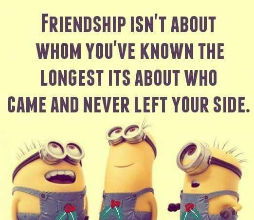 Minion Friendship Quotes