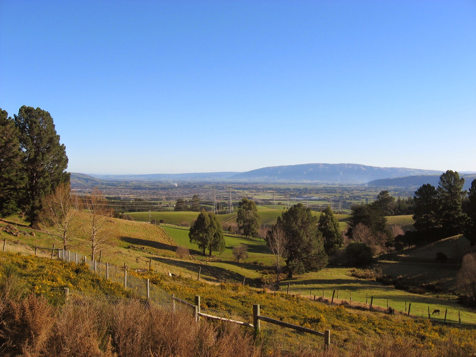 The Taieri Plain