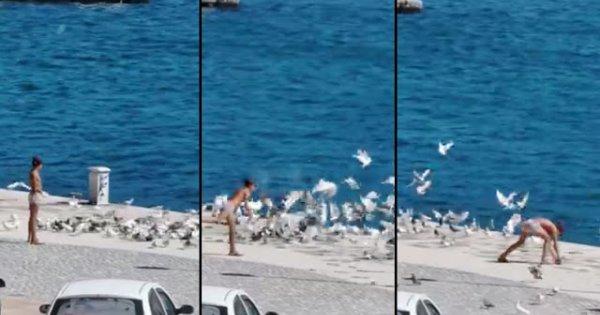 Ανήλικος παράνομος μετανάστης σκοτώνει περιστέρι με πέτρα (βίντεο)
