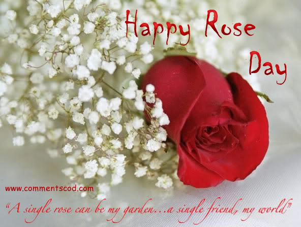 happy-rose-day-2017-images-for-girlfriend