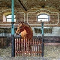 Ekey Horse Barn House Esc…