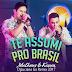 Lançamento: Matheus e Kauan -Te Assumi pro Brasil (DjLuciano GO Remix)