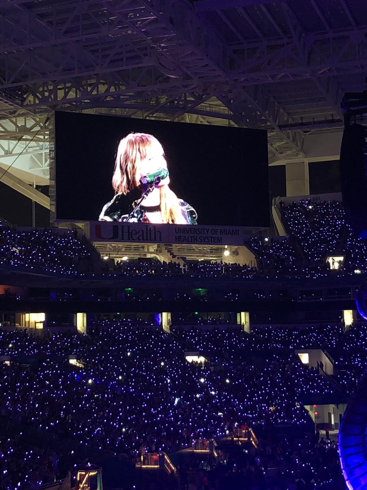 Stephanie Kamp Blog: Taylor Swift Reputation Stadium Tour Miami 2018