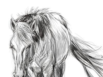 すべての動物の画像 イラスト 馬の絵