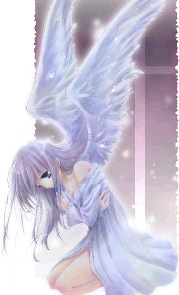 anjos de todos os tipos