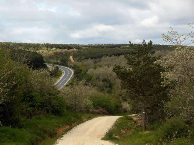 Alto de la Pedraja , Montes de Oca, Camino, Jola Stępień