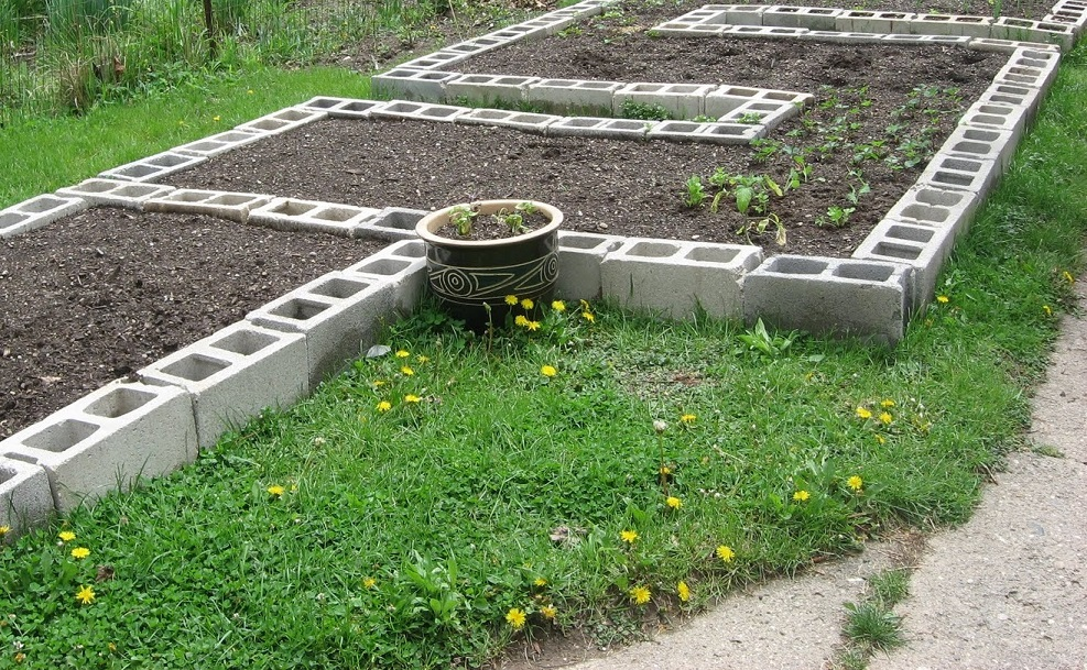 4 Materials You Can Use To Make Cheap Raised Beds