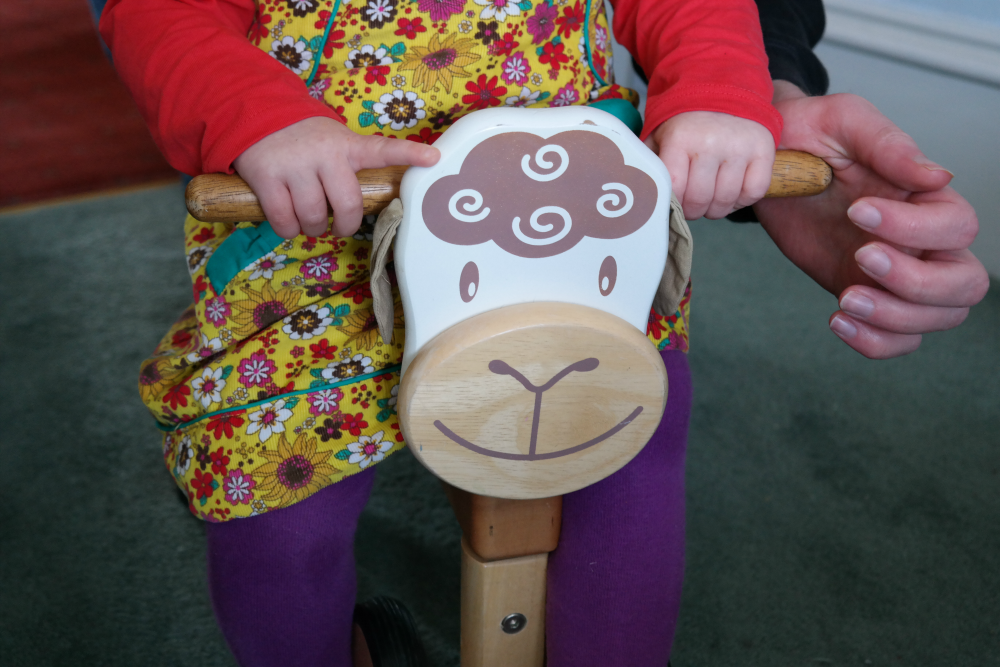Home Life Project: Sheep Trike
