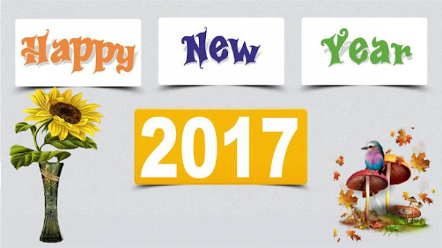 Happy New Year 2017 HD Wallpaper 23