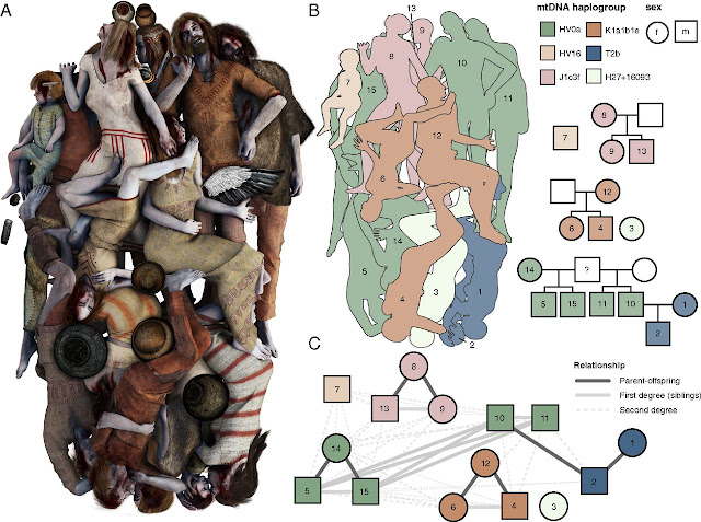 DNA analysis of remains in Neolithic mass grave in Poland shows victims were related