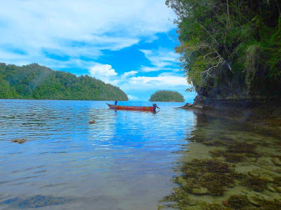 Snorkeling adventure tour in Raja Ampat islands
