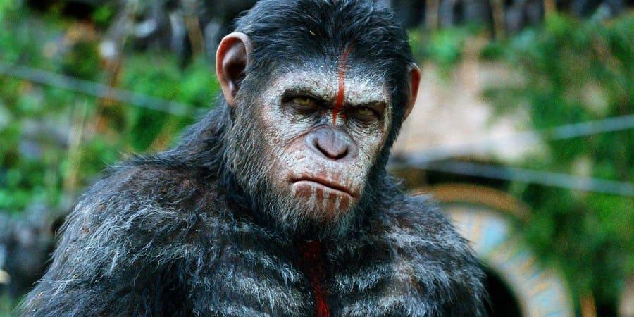 Planeta dos Macacos - Todos os Filmes Torrent