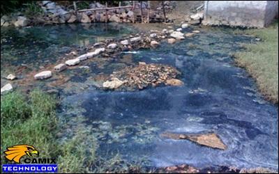 Công ty tư vấn xử lý nước thải thủy hải sản - Vấn đề ô nhiễm môi trường tại các cơ sở chế biến