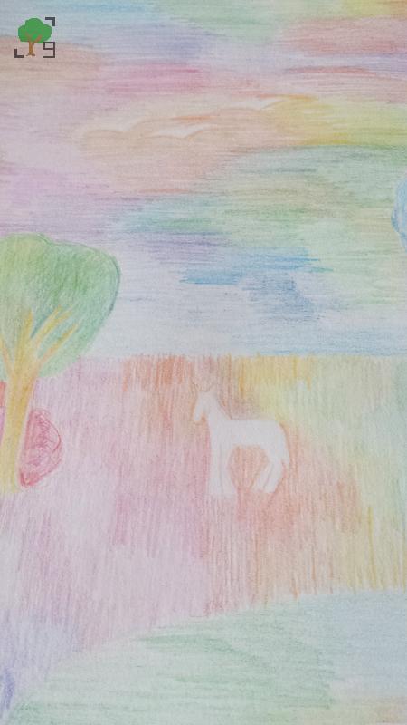 drzewa, kolory, barwnie, psychodelicznie