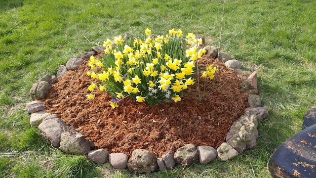 Mulched flower bed