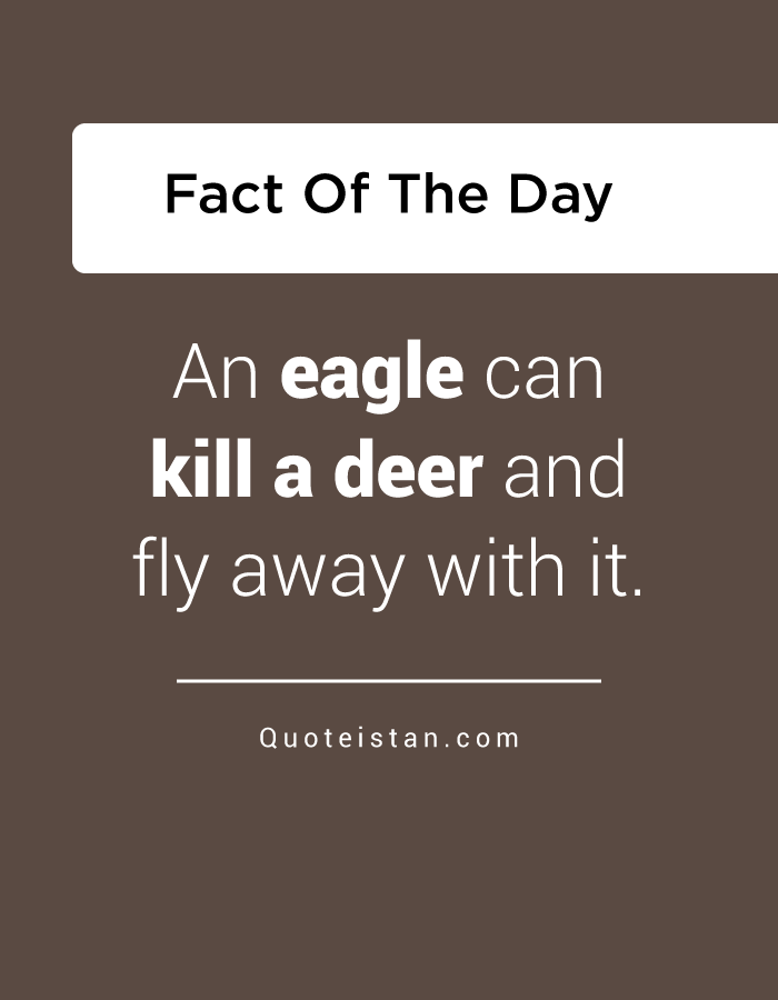 An eagle can kill a deer and fly away with it.