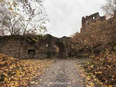 Burgruine Hohnstein, Wandern im Harz in Thüringen