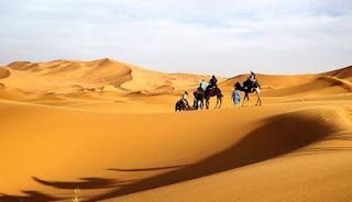 Câu chuyện trong sa mạc