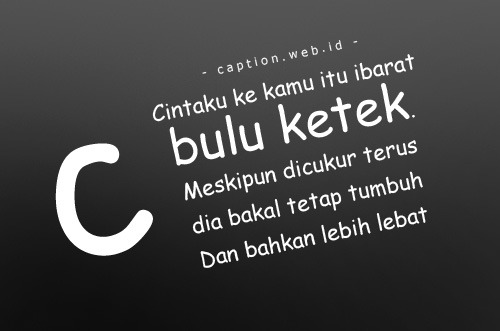 Caption Instagram Lucu SIngkat Gokil Abis