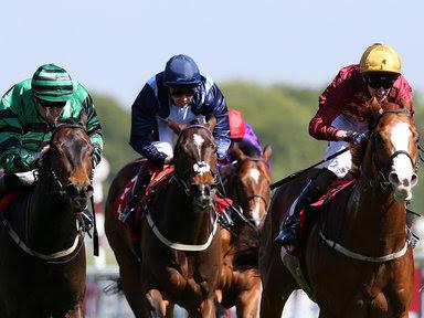 horse racing, Salisbury,