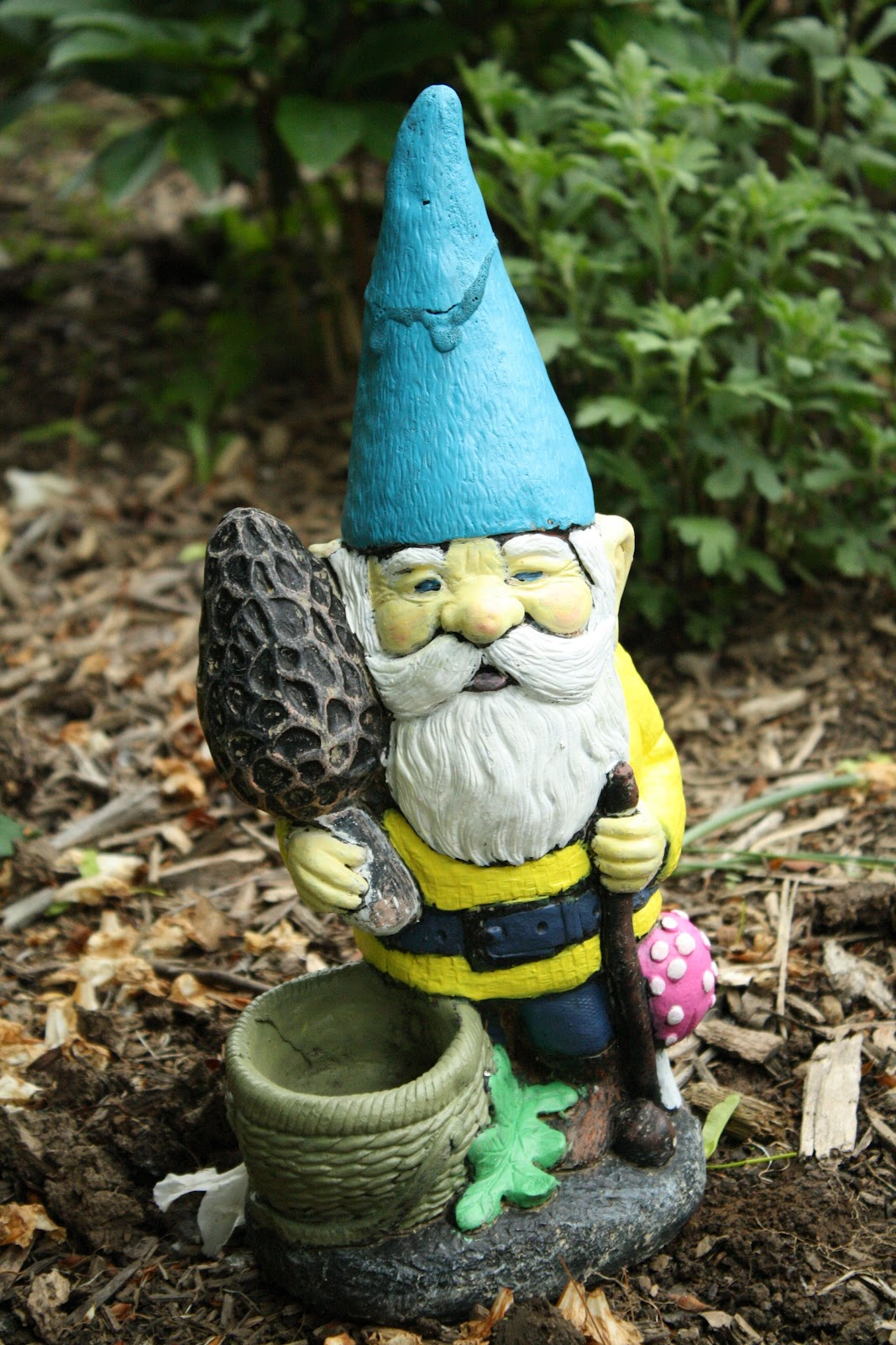 Gnome In Garden: Lawn Gnome Bikini: Garden Gnome In Car