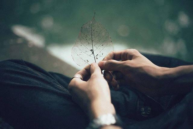 Những triết lý hay về tình yêu buồn và sâu sắc nhất