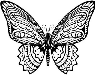660 Koleksi Gambar Hewan Kupu-kupu Hitam Putih HD