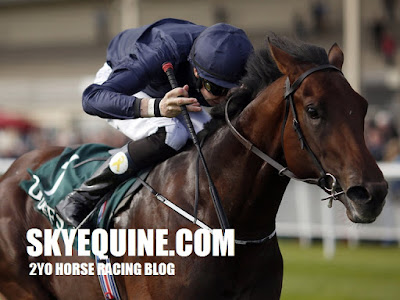 2yo racing tips - sky equine
