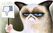 Tổng hợp comment bằng hình ảnh hài hước trong Facebook