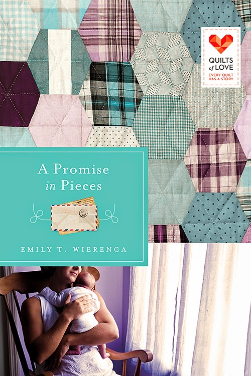 Review - A Promise In Pieces by Emily T. Wierenga