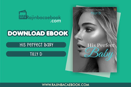 Download Novel His Perfect Baby by Tilly D Pdf