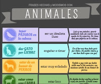 https://lenguajeyotrasluces.files.wordpress.com/2015/04/frases-hechas-animales-png.png