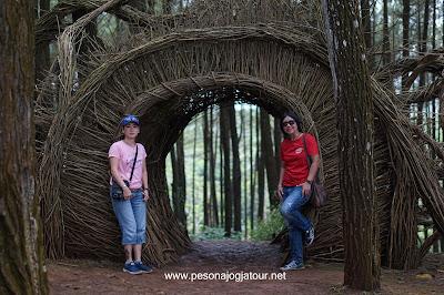 Spot Ranting Hunta Pinus Pengger