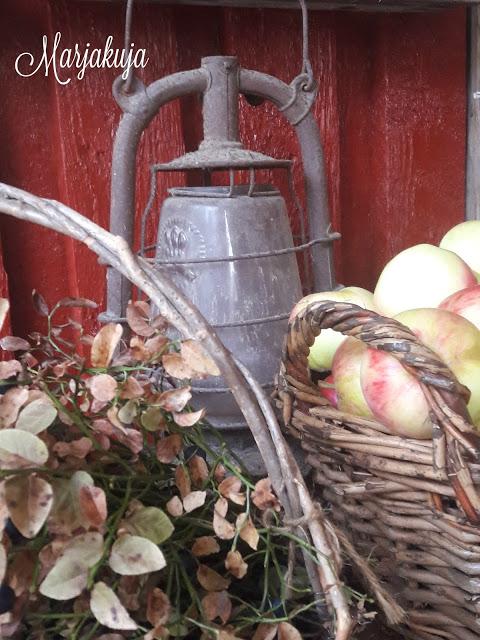 syksyinen asetelma omenat